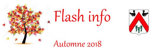 visuel édition flash info municipales